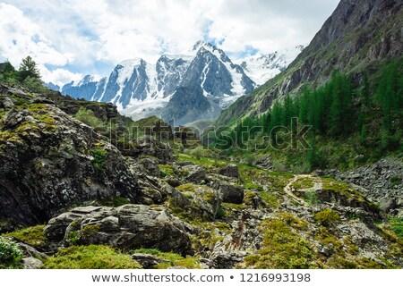 альпийский · декораций · пейзаж · дома · лифт · стульев - Сток-фото © mikhailmishchenko