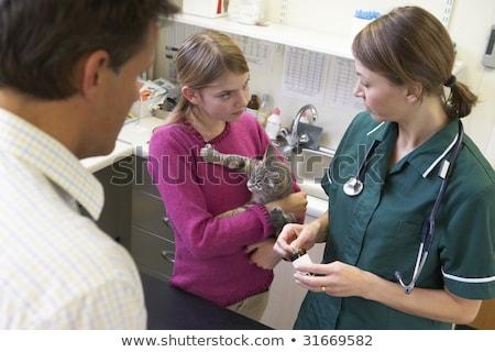 sahip · kedi · kadın · doktor · kadın - stok fotoğraf © monkey_business