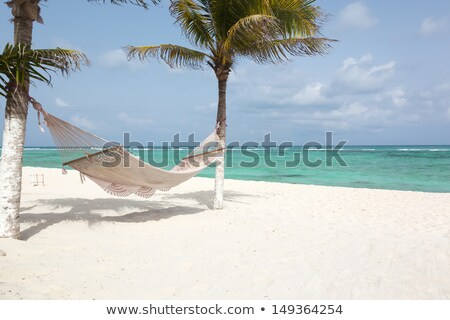 beach paradise white sand turquoise Tulum Stock photo © lunamarina