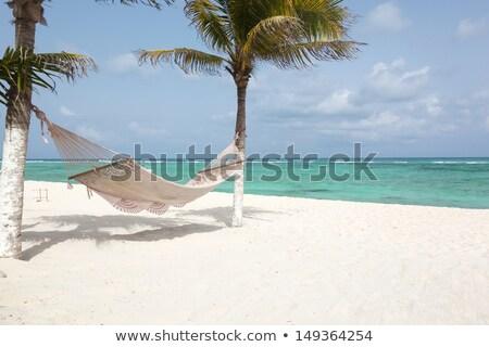 plaży · raj · biały · piasek · turkus · wody · charakter - zdjęcia stock © lunamarina