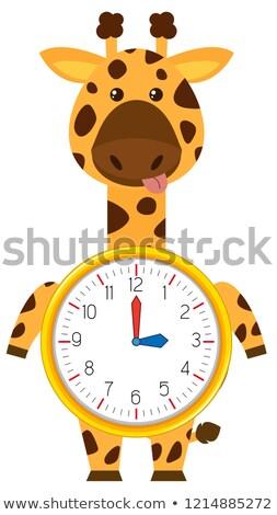 Rajz zsiráf óra sablon illusztráció háttér Stock fotó © bluering