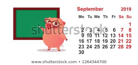 Calendar September 2019 year pig teacher at green blackboard Stock photo © orensila