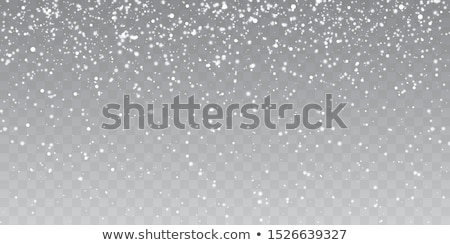 snowfall on blue transparent background Stock photo © romvo