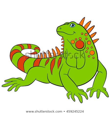 Cartoon iguana posiedzenia ilustracja uśmiechnięty zielone Zdjęcia stock © cthoman