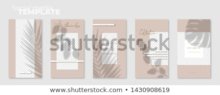 Editable Story Template Collection Photo Frames White Background Stock photo © adamson