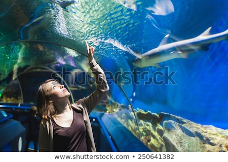 Jeune femme regarder poissons tunnel aquarium femme Photo stock © galitskaya