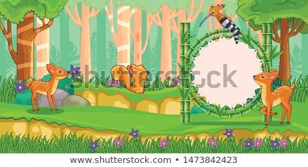 Zsiráf bambusz erdő illusztráció fa tavasz Stock fotó © colematt