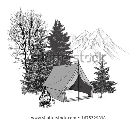 Mountains View, Tent in Coniferous Forest vector Stock photo © robuart