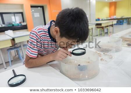Menino ciência classe elétron microscópio feliz Foto stock © galitskaya