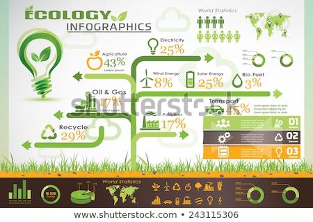 Environment Pollution Illustration Info Chart Stock photo © leedsn