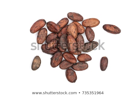 Cacao vruchten ruw bonen boom Blauw Stockfoto © galitskaya