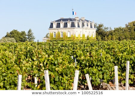 chateau de la tour by bordeaux region france stock photo © phbcz
