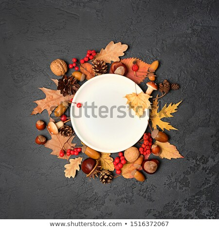 Autumn table setting with leaves Stock photo © furmanphoto