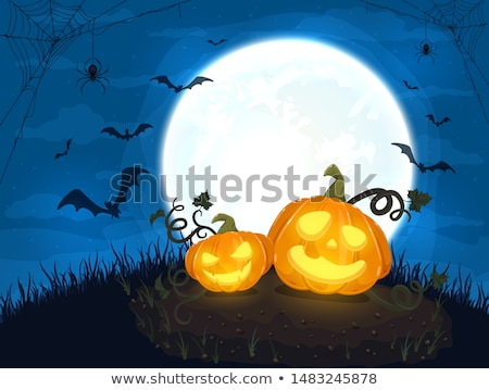 Zwarte halloween twee pompoenen ontwerp nacht Stockfoto © SArts