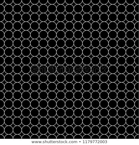 白 グリッド アップ 5 サークル ストックフォト © evgeny89