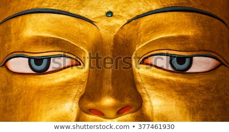 Sakyamuni Buddha statue in Shey monastery. Shey, Ladakh, India Stock photo © dmitry_rukhlenko