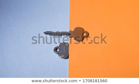 Kettő kulcsok gyűrű izolált fehér textúra Stock fotó © elly_l