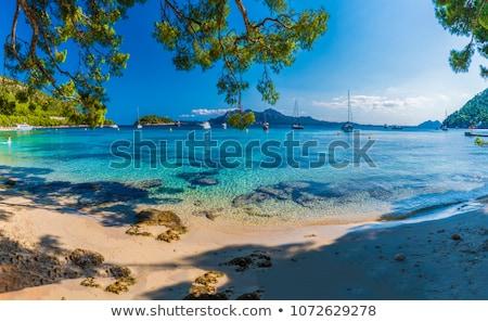 Beach in Mallorca Spain Stock photo © photoblueice