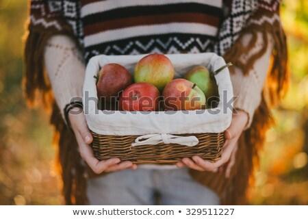 gyönyörű · nő · alma · erdő · portré · mezítláb · nő - stock fotó © Pilgrimego