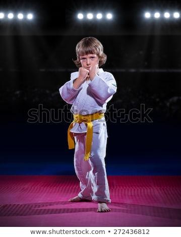 Stok fotoğraf: Karate · erkek · spor · salon · el · egzersiz