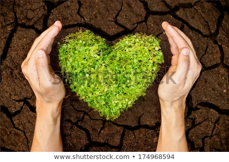 heart shape in dry soil Stock photo © smithore