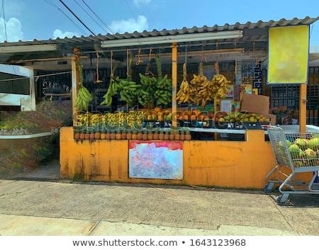 mexikói · falu · városi · jelenet · épületek · kaktusz · természet - stock fotó © dayzeren