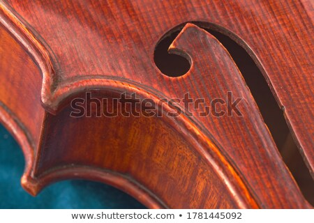 Violin viola body isolated on Blue Stock photo © mkm3