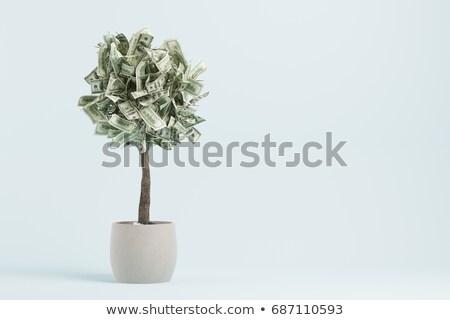 Foto stock: 3D · árbol · dólares · resumen · diseno · cuadro