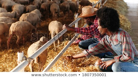 Farming couple sitting in the hay Stock photo © photography33