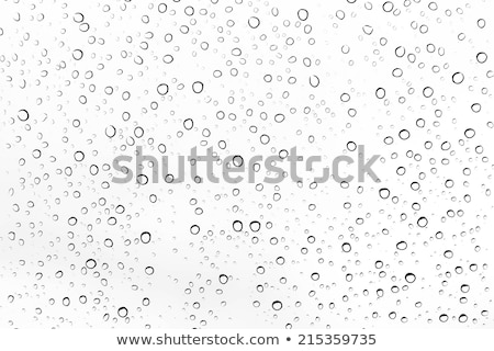 abstract glossy water drop Stock photo © rioillustrator