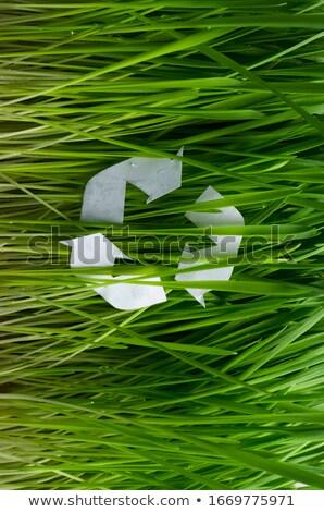 Reciclar signo hierba reciclaje gris negocios Foto stock © milsiart