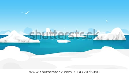 ice in the ocean in antarctica Stock photo © timwege