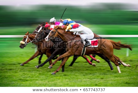 Horse and Jockey Rider Stock photo © mintymilk