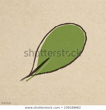 leaf of green crushed paper stock photo © zhukow
