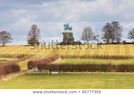 George III equestrian statue Stock photo © Snapshot