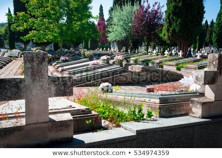 cimetière · vieux · noir · corbeau · croix · fond - photo stock © speedfighter