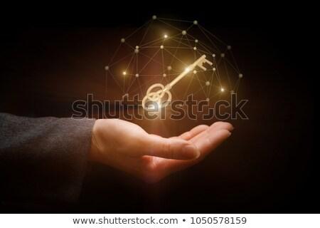 iş · adamları · altın · anahtar · yalıtılmış · beyaz · iş - stok fotoğraf © tashatuvango