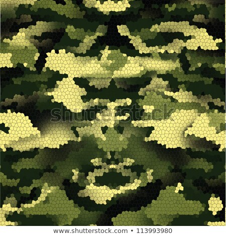 3d soldier textured with camouflage stock photo © kirill_m