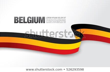 euro · simge · Belçika · bayrak · vektör · para - stok fotoğraf © stockwerkdk