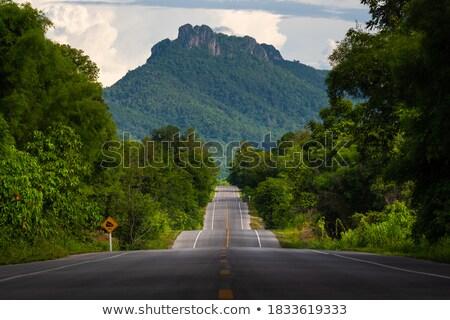Bumpy road ahead Stock photo © Hofmeester