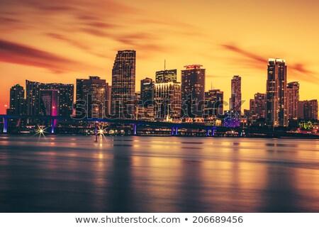 Miami · éjszaka · sziluett · város · épületek · városi - stock fotó © vwalakte