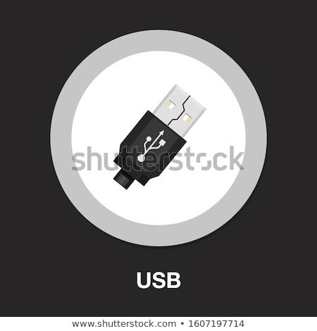 Vecteur usb lecteur flash noir mémoire disque Photo stock © gladcov