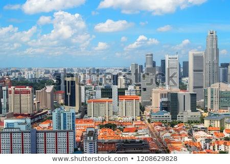 Panoramic view of Singapore stock photo © joyr