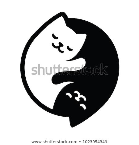 Yin yang férfi női nő szex szeretet Stock fotó © nickylarson974
