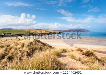 Sand dunes at Balnakeil Bay Stock photo © franky242