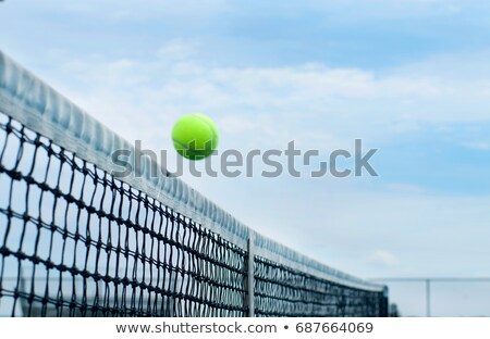 Volley Ball over grass Stock photo © Koufax73
