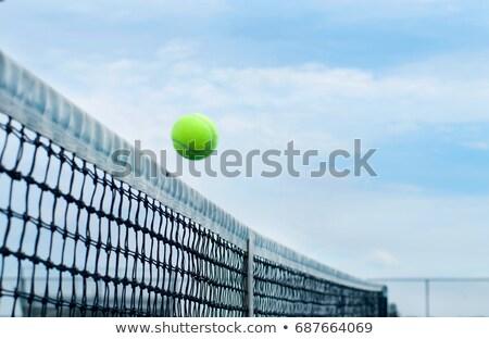 vôlei · bola · branco · grama · praça · imagem - foto stock © koufax73
