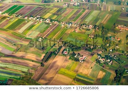 polish farmland near Krakow Stock photo © meinzahn