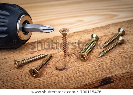 Cordless screwdriver screwing a screw into wood Stock photo © njnightsky