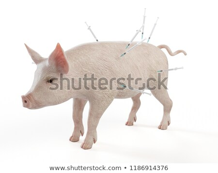 injection to a pig. Isolated 3D image stock photo © ISerg